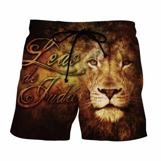 Majestic Lion Creative Sketch Fire Background Cool Shorts