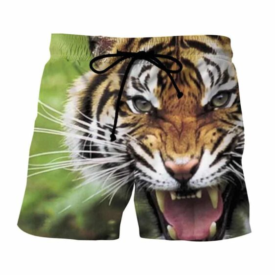 Ready To Attack Wild Tiger Scary Look Stunning Boardshorts