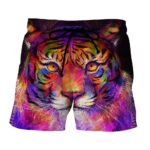 Colorful Painting Style Tiger Art Stunning Design Boardshorts