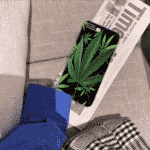 Green Hybrid Cheeba Black iPhone 11 (Pro & Pro Max) Case