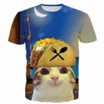 Pirate Greedy Tacos Kitten Cat Funny Casual Blue 3D T-Shirt - Woof Apparel
