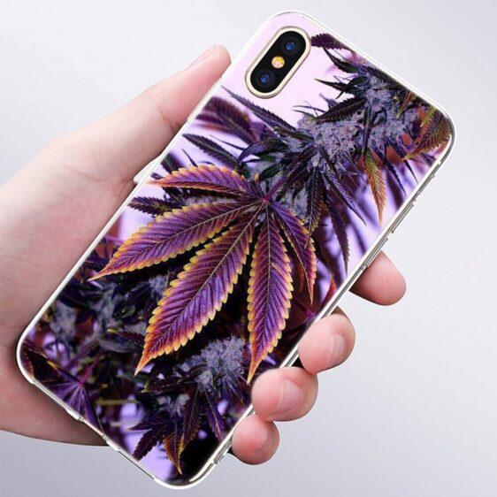 Purple Haze Flower Bud Cannabiss Leaf IPhone 11 (Pro & Pro Max) Cases