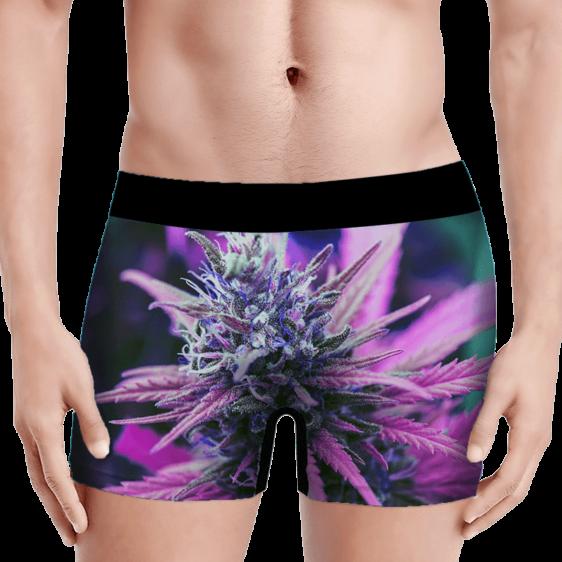 THC Cannabis Plant 420 Weed Vibrant Marijuana Men's Boxers