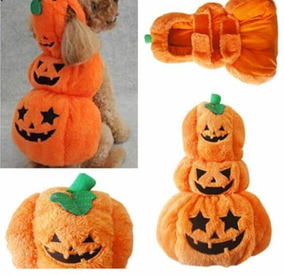 Halloween Adorable Pumpkin Costume For Dogs - Woof Apparel