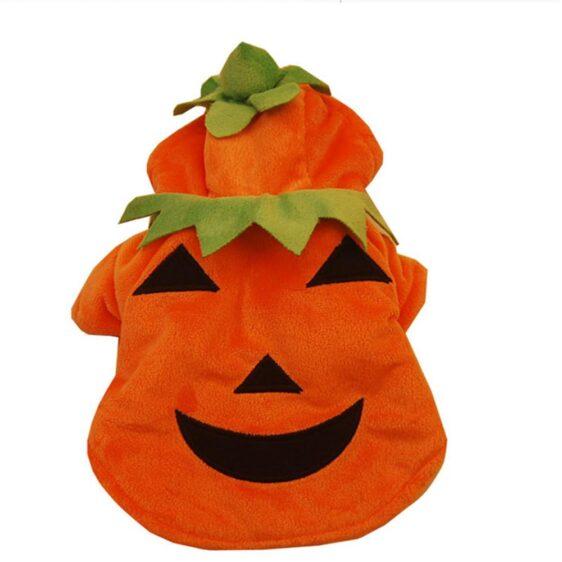 Halloween Cool Pumpkin Orange Costume For Dogs - Woof Apparel
