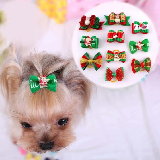 One Pack Pet Ribbon Hair Accessories With Rubber Band - Woof Apparel