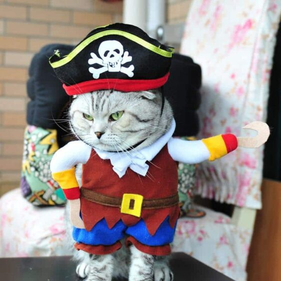 Pirates of the Caribbean Funny Halloween Costume for Dog - Woof Apparel