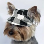 Black And White Checkered Dog Sun Visor With Velcro Straps - Woof Apparel