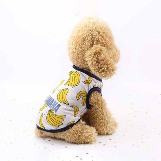 Banana Pattern Blue Lining Spring Small Dog Tank Top - Woof Apparel