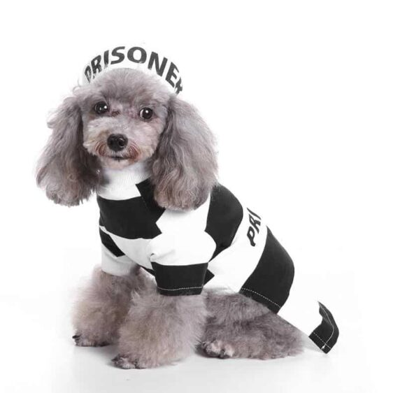 Adorable Little Prisoner Set Stripes with Hat Costume for Dog - Woof Apparel