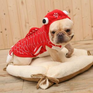 Funny Goldfish Comfortable Hoodie Costume for Dog - Woof Apparel