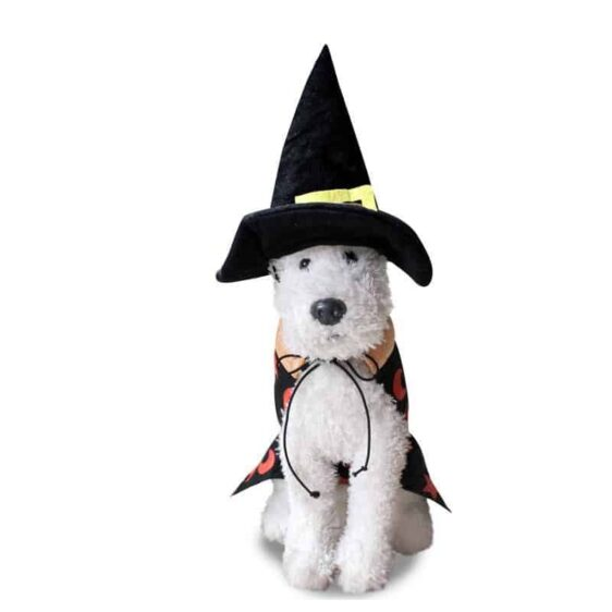 Halloween  Vampire Wizard Cosplay Costume For Dogs - Woof Apparel