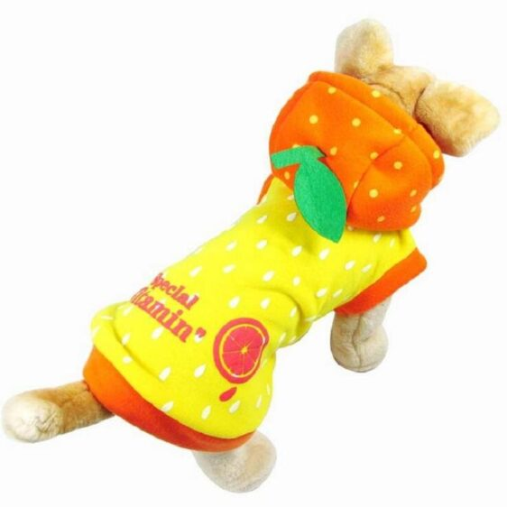 Cute Watermelon Orange Fruit Costume for Dog - Woof Apparel