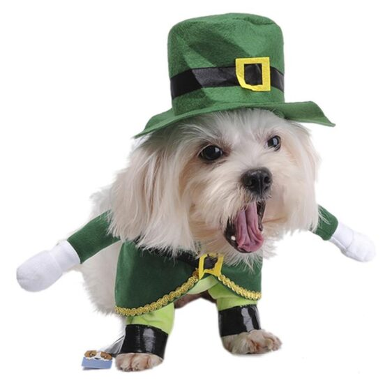 Fairy Tale  Handsome Prince  Costume For Dogs - Woof Apparel