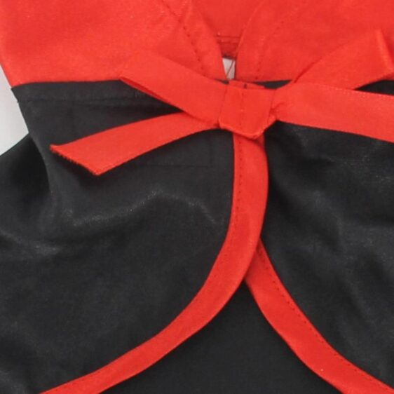 Vampire Cape Gothic Style Costume For Your Adorable Cats - Woof Apparel