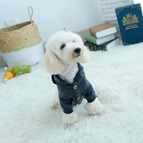 Cool Buttoned Winter Jacket Outfit Small Dog Hoodie - Woof Apparel