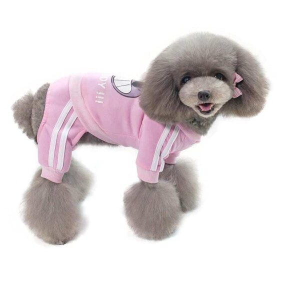 Pirate Track Stripe Autumn Winter Jumpsuit For Small Dogs - Woof Apparel