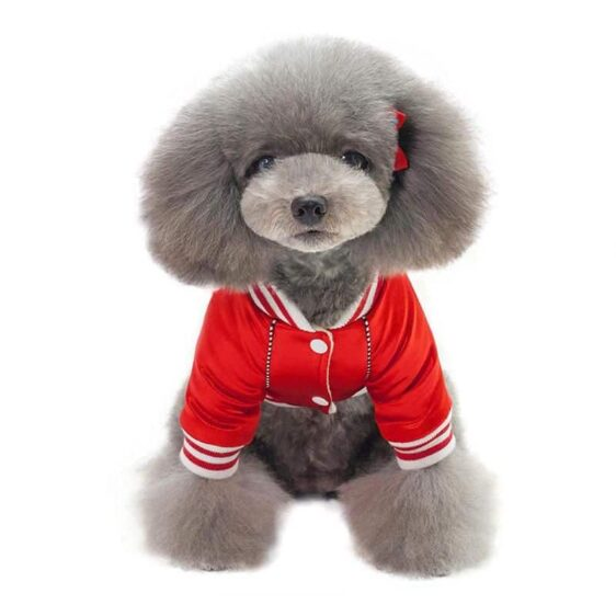 Cute Warm Baseball Jersey Jacket for Cool Sporty Dogs - Woof Apparel