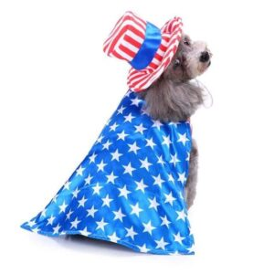 Patriotic American Flag Uncle Sam Costume for Boy Girl Dogs - Woof Apparel