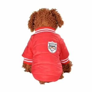 Sporty Nylon Taffeta Winter Baseball Jacket For Small Dogs - Woof Apparel