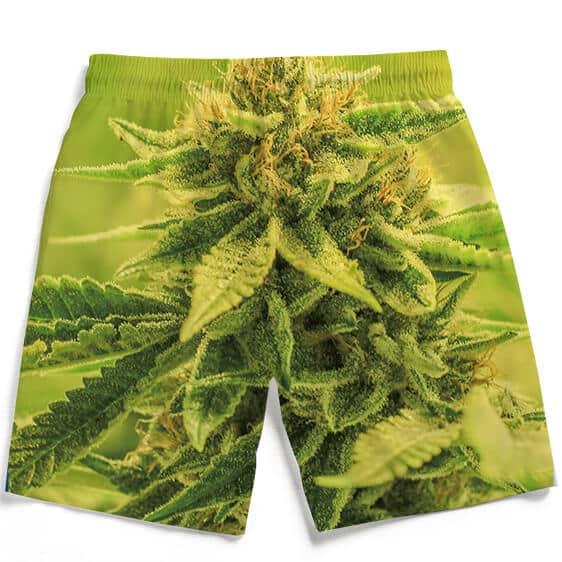 Amazing Marijuana Weed Top Bud Cola Print Men's Boardshorts