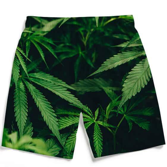 Marijuana Hemp Plant 420 Green Fantastic Men's Boardshorts