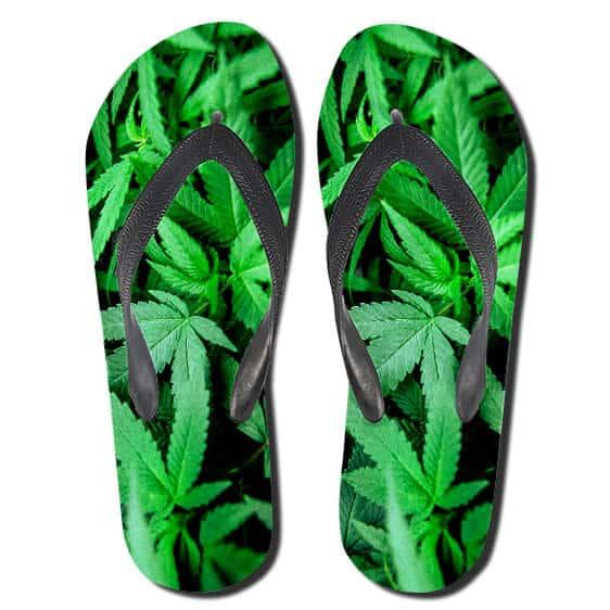 Realistic 420 Green Cannabis Strain Plant Slippers