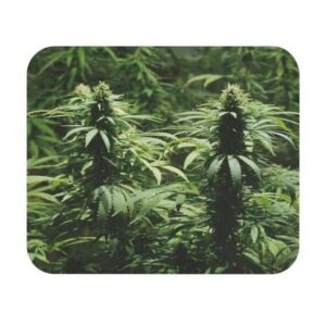 Realistic Marijuana Plant Smoke Weed Gaming Mouse Pad